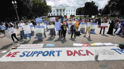 Federal Judge Upholds DACA, Calling White House Decision To Rescind It 'Capricious'