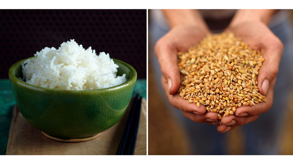 Rice Vs. Wheat