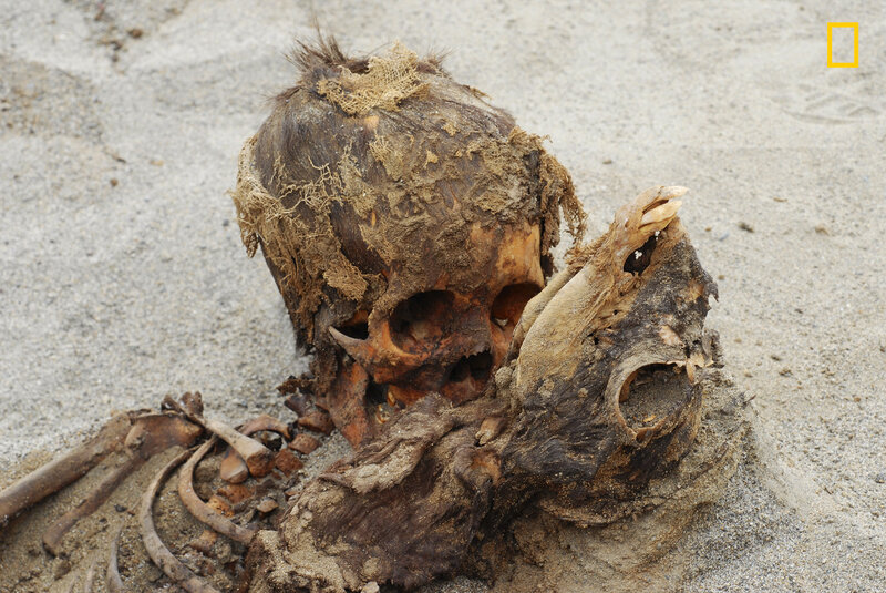 Remains of 140 Children Were Found In Peru And Date To A D