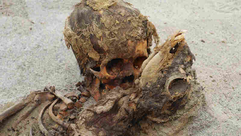 Remains Of More Than 140 Children Who Were Sacrificed Found In Peru