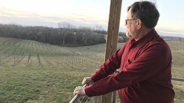 Jerry Eisterhold runs Vox Vineyards in Weston, Mo. He
