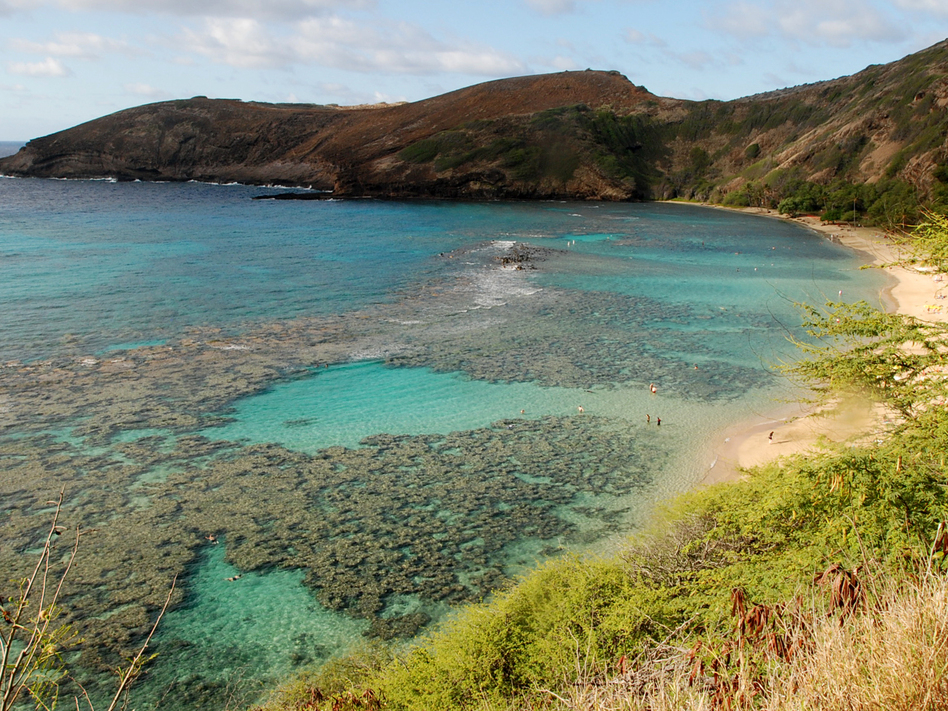 Much of the inner reef at Oahu's Hanauma Bay is dead after decades of tourism. The state may sign a law banning over-the-counter sunscreens believed to harm coral. (Caleb Jones/AP)