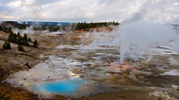 Steam rises from the vents of Porcelain Basin in Yellowstone National Park
