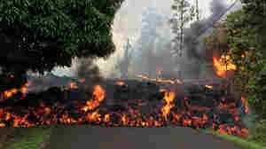 PHOTOS: Fissures, Lava Flow And Evacuations Continue On Hawaii's Big Island