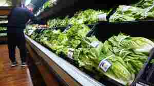 Dozens Of Victims Are Still Coping With The E. Coli Outbreak In Romaine Lettuce