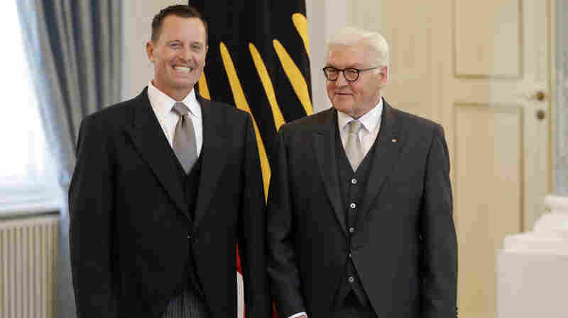 New U.S. Ambassador To Germany Grenell Irks His Hosts The Day He Arrives