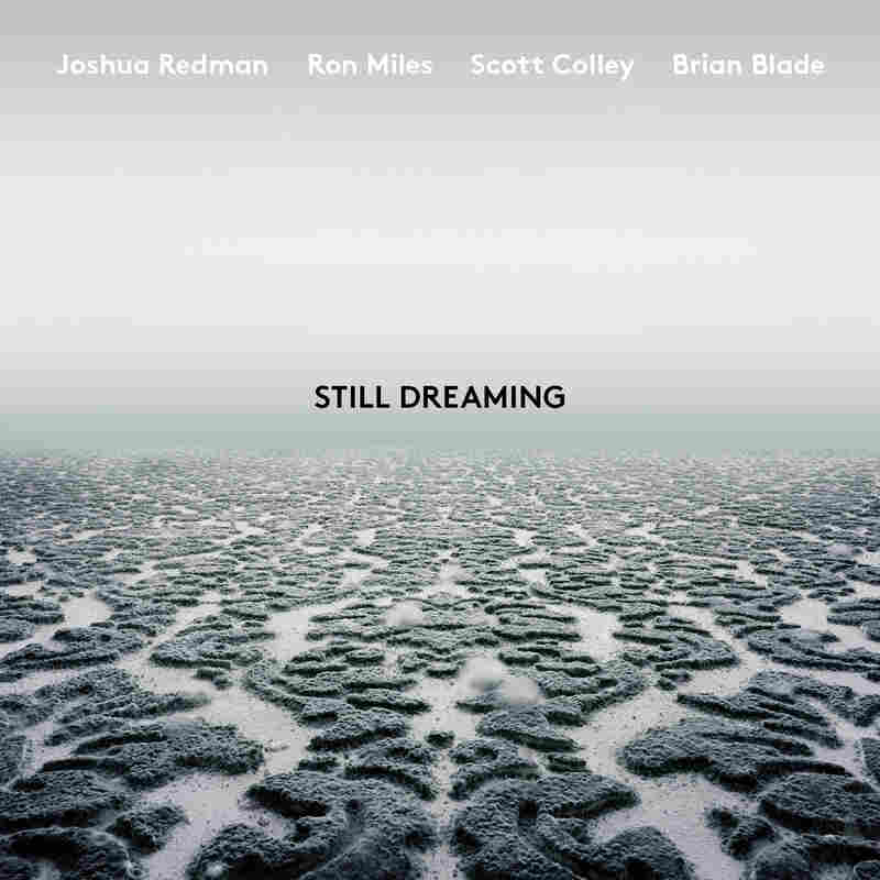 Joshua Redman,  Still Dreaming (feat. Ron Miles, Scott Colley & Brian Blade)