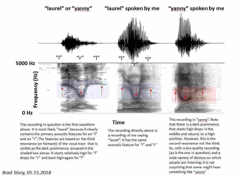 Story analyzed the acoustic features of the words