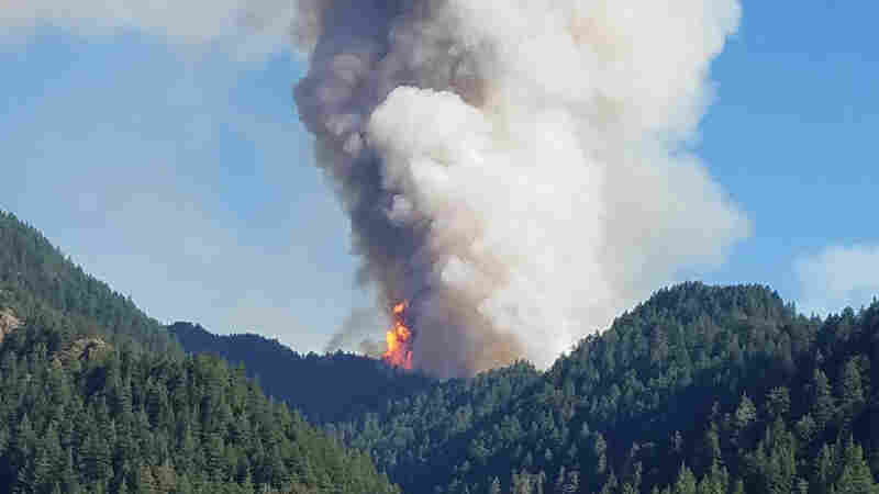 Judge Orders Boy Who Started Oregon Wildfire To Pay $36 Million In Restitution