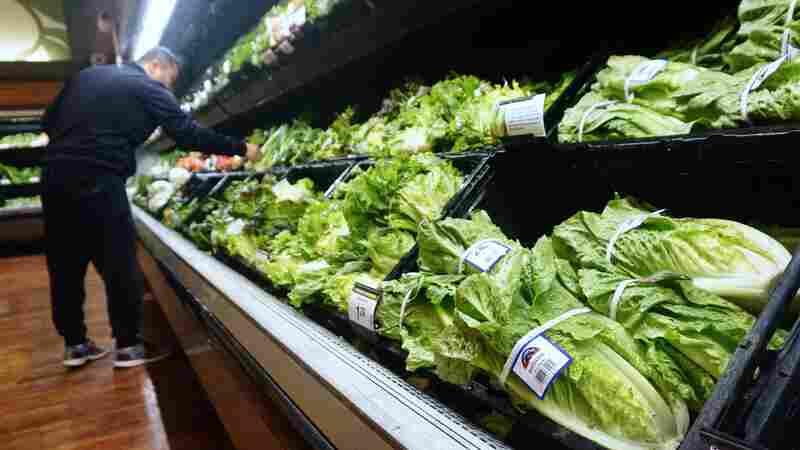 Hey, Salad Lovers: It's OK To Eat Romaine Lettuce Again