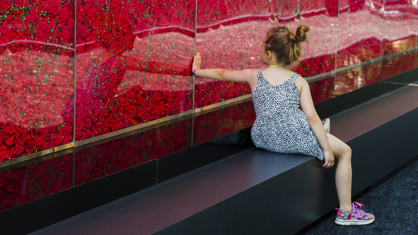 A Wall of Poppies Honors Fallen Soldiers On The National Mall