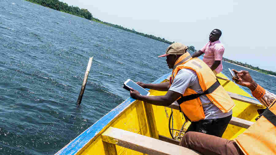 Why Ghana's Clam Farmers Are Digging GPS