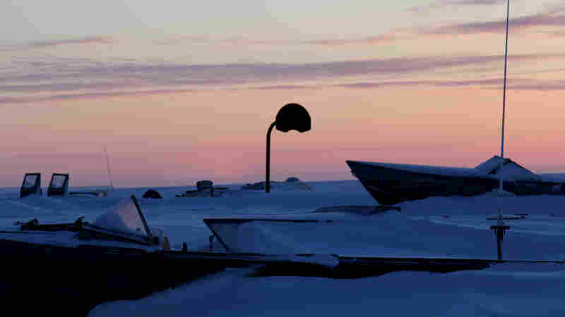 Alaska Native Tannery Is Bringing Seal Back
