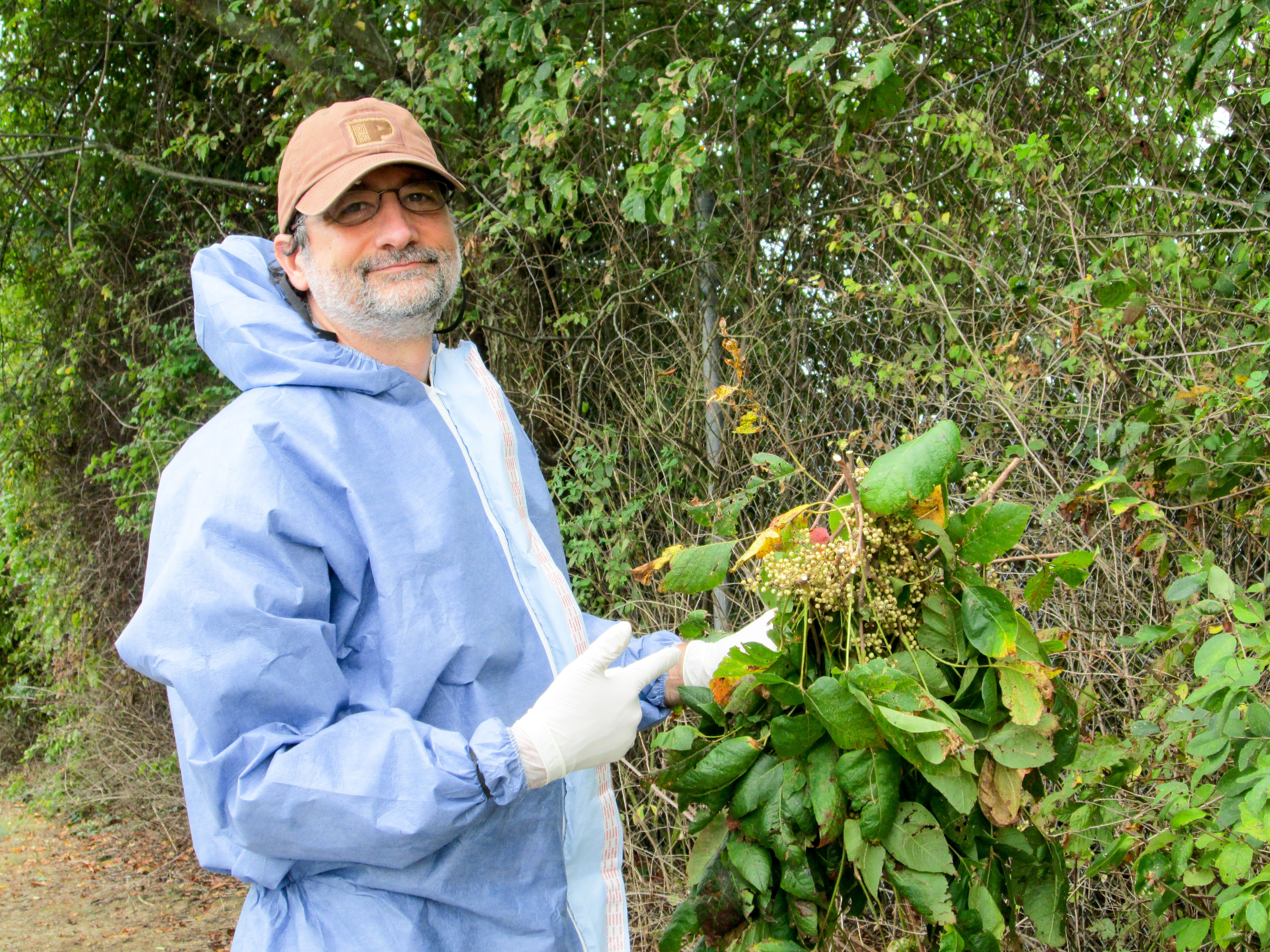 Don't Touch! A Scientist's Advice For Spotting Poison Ivy Before It Ruins Your Summer