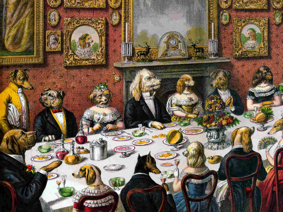 Victorian print of a large dinner party of dogs in formalwear and cat servants; hand-colored engraving, 1893.