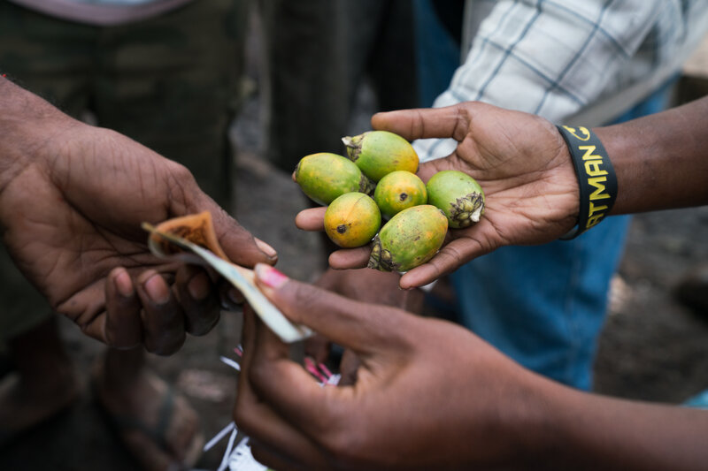 For Women In Papua New Guinea, Income From Selling Betel Nut