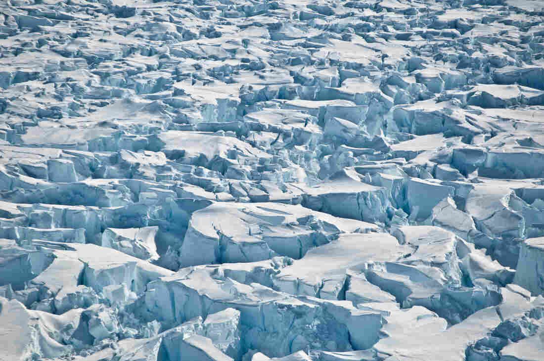 How much has ice melting in Antarctica contributed to sea level rise?