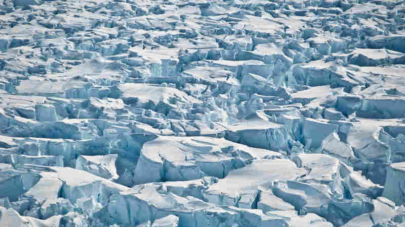 Antarctica Has Lost More Than 3 Trillion Tons Of Ice In 25 Years