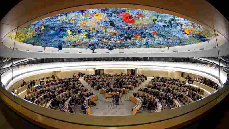 U.S. Announces Its Withdrawal From U.N. Human Rights Council