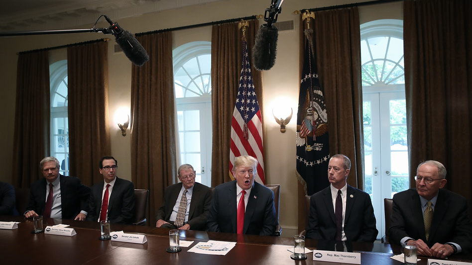 President Trump speaks on immigration issues while meeting with Republican members of Congress in the Cabinet Room of the White House. (Win McNamee/Getty Images)