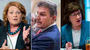 5 Senators Who Will Likely Decide The Next Supreme Court Justice
