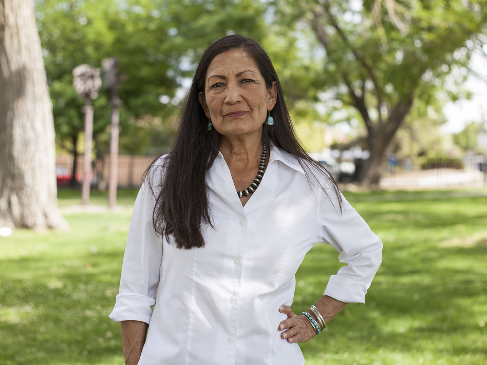 Deb Haaland worked on President Obama's 2008 campaign before chairing New Mexico's Democratic Party. Now she's running for office with a record number of other Native Americans across the country. (Juan Labreche/AP)