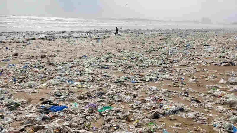 An Indian State Bans Plastic Bags, Straws And More. Will It Work?