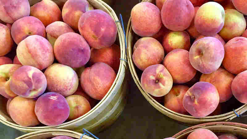 Peach Wars: Southern States Spar Over Which Has The Most Juice