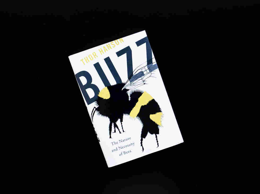 Buzz by Thor Hanson.