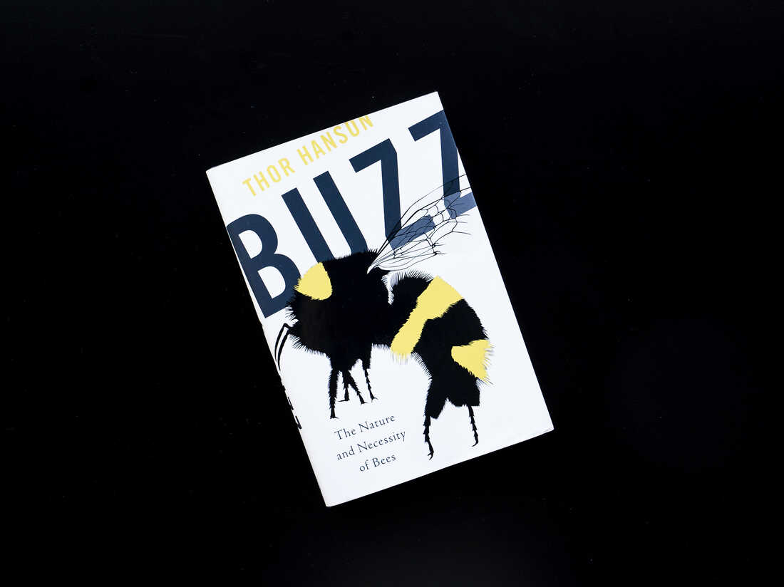Buzz by Thor Hanson.