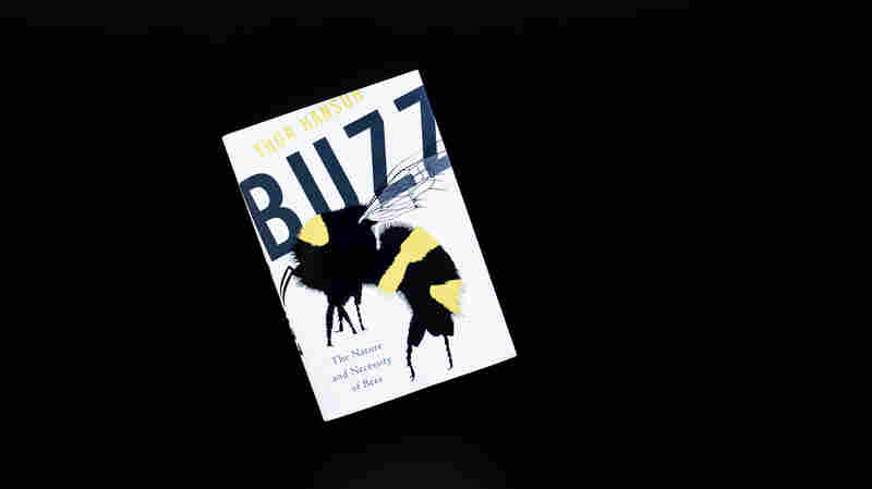 'Buzz' Offers An Adoration For Bees Amid Continued Die-Offs