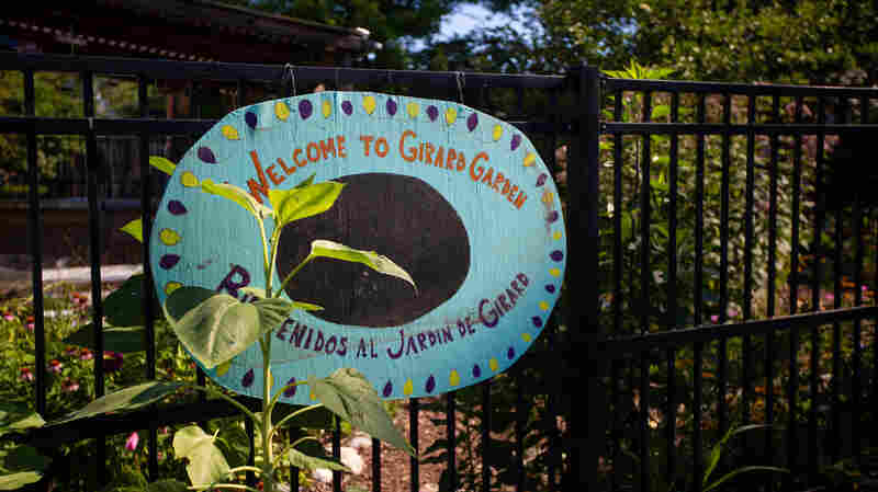 Replacing Vacant Lots With Green Spaces Can Ease Depression In Urban Communities