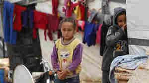 U.S. Refugee Program 'In Danger' Amid Steep Drop In Refugee Arrivals, Advocates Warn