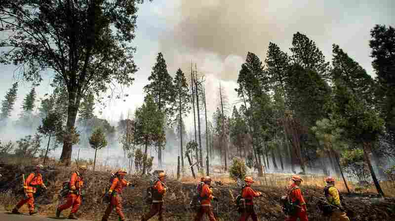 Wildfire Closes Parts Of Yosemite As Firefighters Try To Contain Blaze