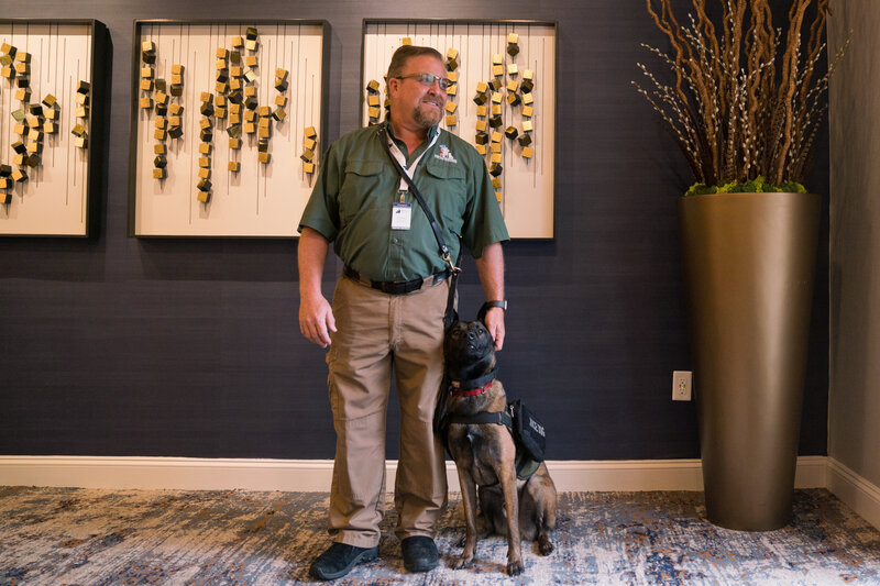 b4b4d9ff9f3 Service Dog Registries To Streamline Travel For Veterans With  Invisible  Injuries