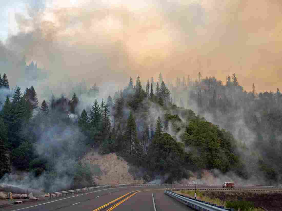 Children, Great-grandmother Die in California Wildfire