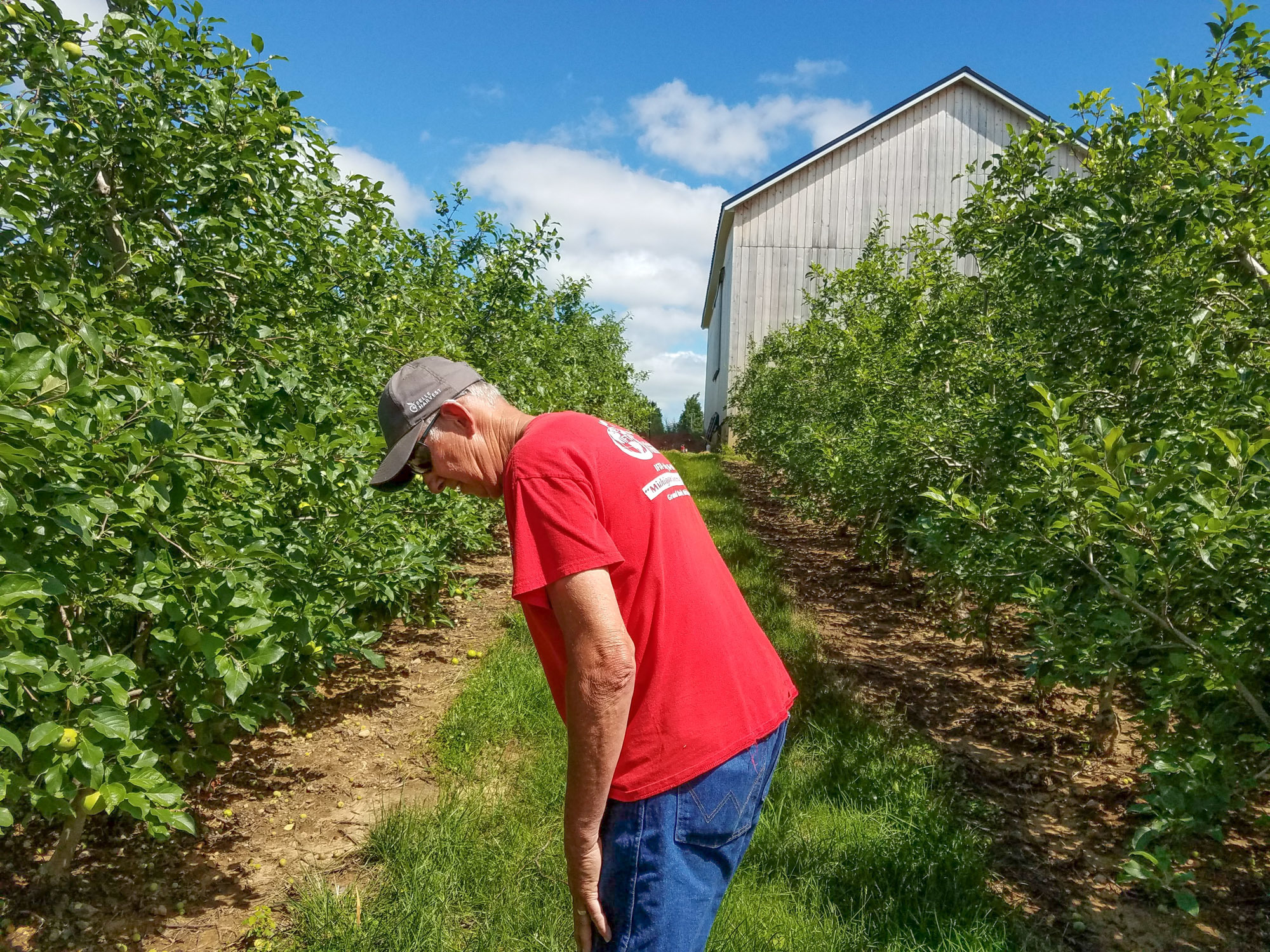 A Few More Bad Apples: As The Climate Changes, Fruit Growing Does, Too