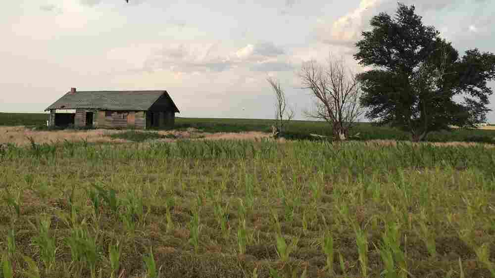 Rural America Faces A Crisis In 'Adequate Housing'