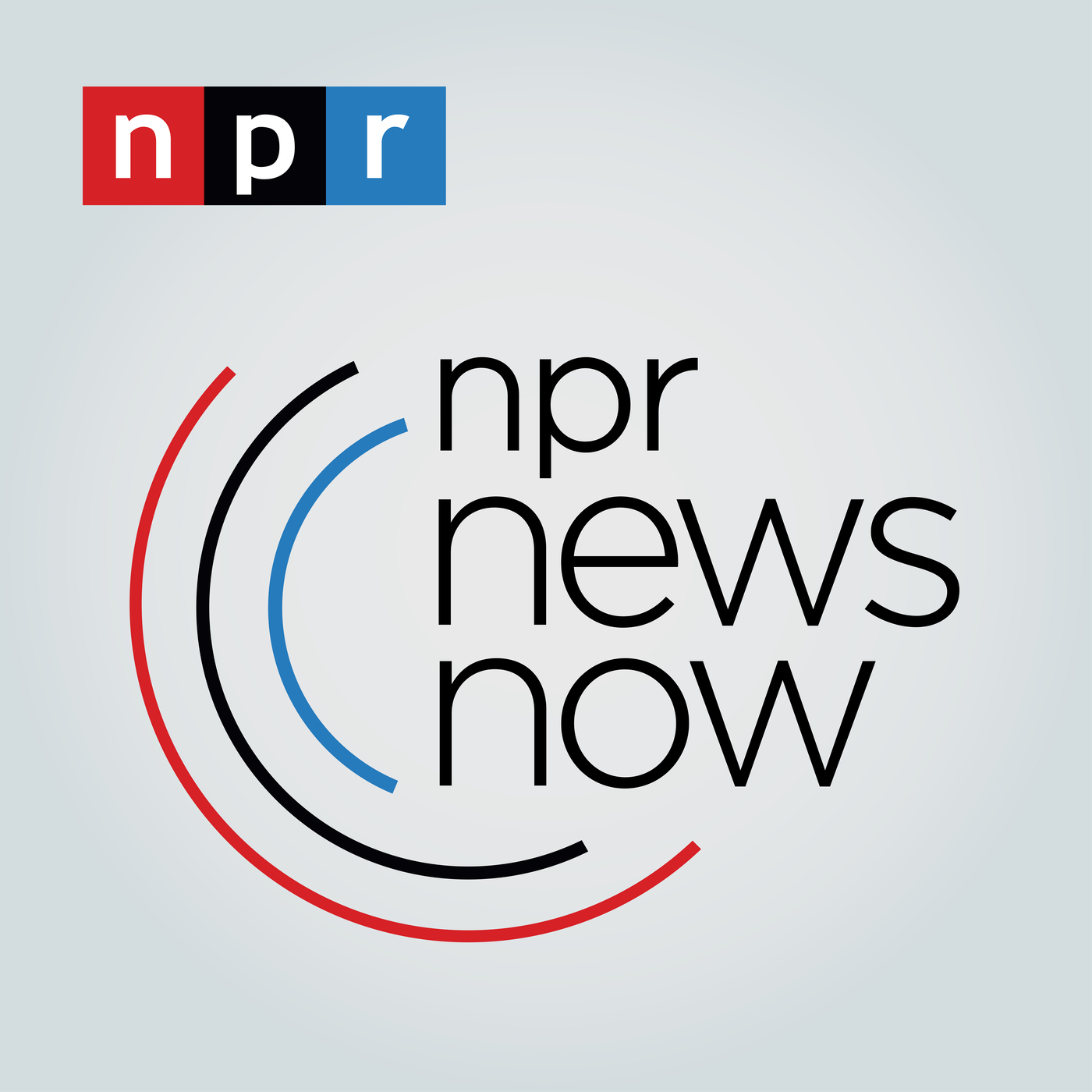 NPR News Now Logo