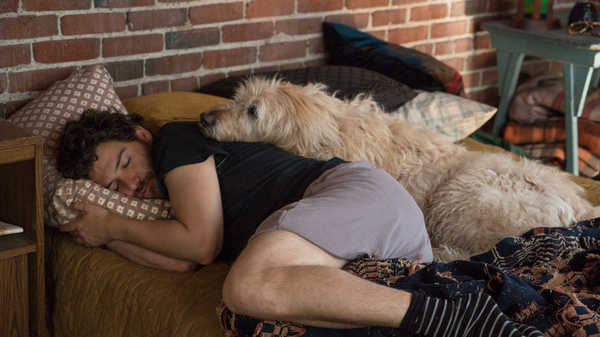 'Dog Days' Is Shaggy But Lovable