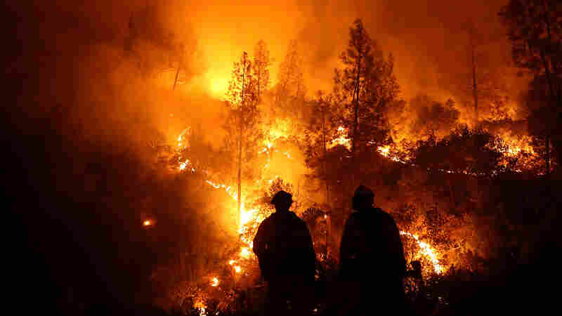 Wildfire Reports Ignite Debate Over Climate Change Coverage
