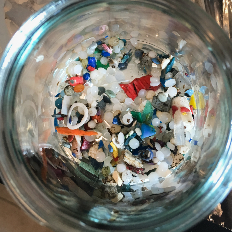 Microplastics found along Lake Ontario by Rochman's team (Chris Joyce/NPR)