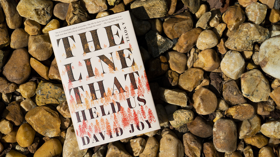 Image result for The Line That Held Us by David Joy