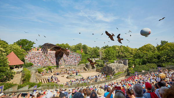 A falconry show is one of Puy du Fou's historical shows, featuring hundreds of falcons, vultures, kites and owls.