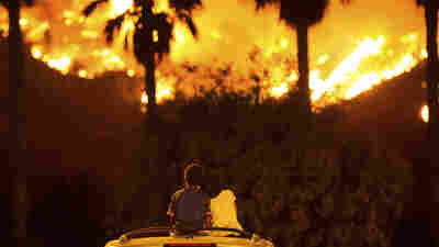 Politics Of Wildfires: Biggest Battle Is In California's Capital