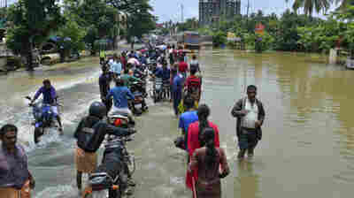 Monsoon Floods Have Killed More Than 320 People In Kerala, India