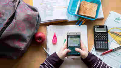 Opinion: Please Take Away My Kids' Cellphones At School