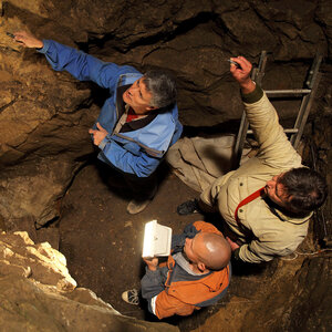 Ancient Bone Reveals Surprising Sex Lives Of Neanderthals