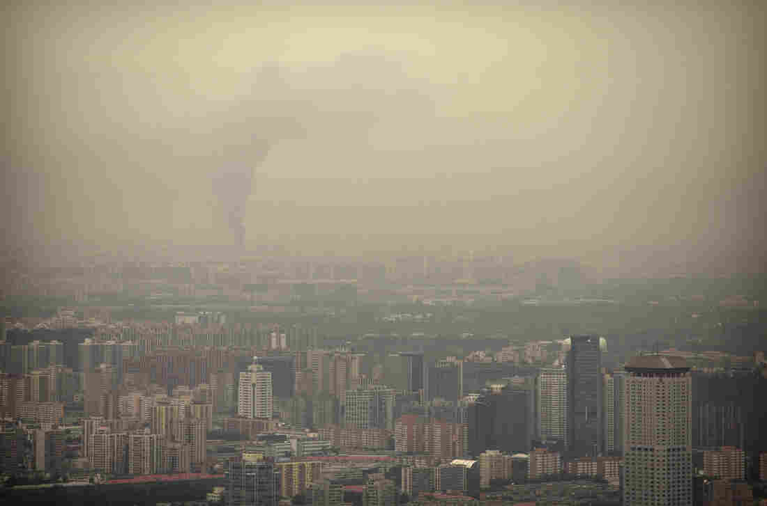 Long-term exposure to air pollution can impair cognitive function