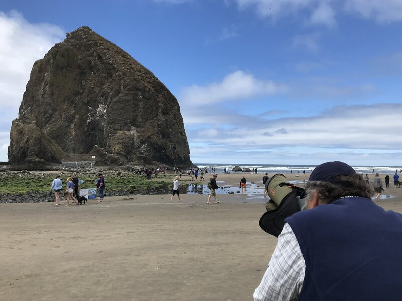 Rediscovering Haystack Rock With An